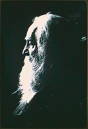 Walt Whitman, Walt Whitman poetry, Secular or Eclectic, Secular or Eclectic poetry, Transcendentalist poetry,  poetry,  poetry
